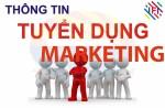Thông báo tuyển chuyên viên Truyền thông - Marketing