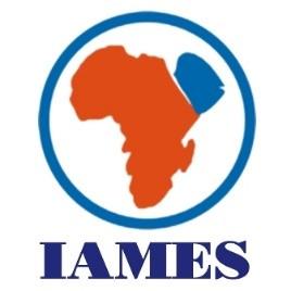 Viện Nghiên cứu Trung Đông – Châu Phi